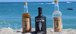 Photo for: Florida's Finest Handcrafted Rums - Doc's Really Bad Rums